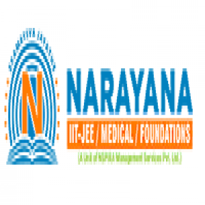 Narayana Group of Educational Institutions Faridabad
